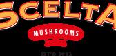Scelta-Logo