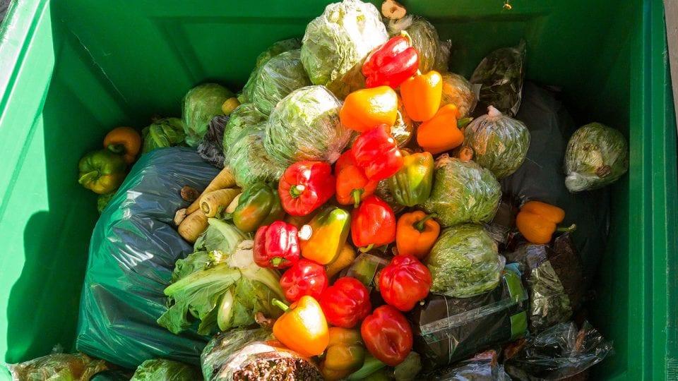 Interview WUR - Toine Timmermans - Samen Tegen Voedselverspilling